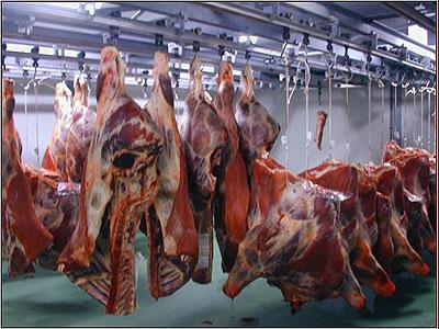 صنعت گوشت